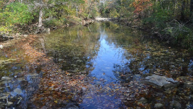 Ozark Mountain State Park includes nearly two miles of Roark Creek.