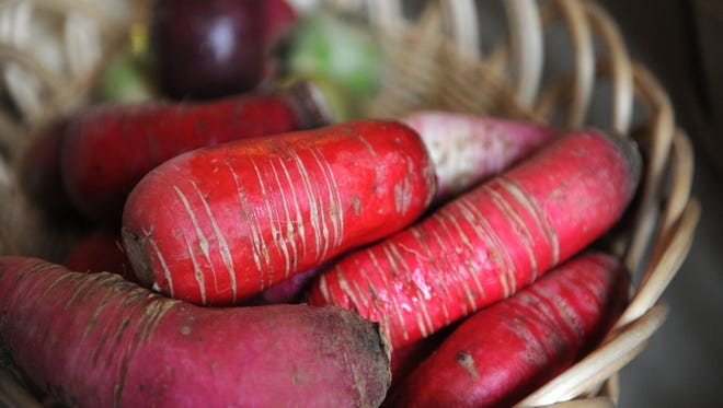 Winter radishes from Musick Mountain Farm of Williamsburg, KY