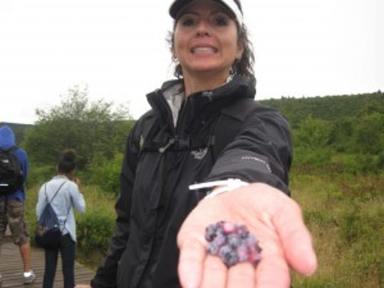 Me picking wild blueberries last year.