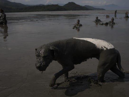 APTOPIX Brazil Mud Carnival (3)
