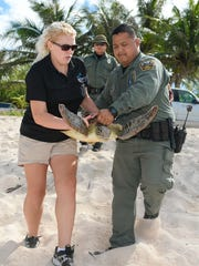 """Valerie,"" a recovered green sea turtle, is carried to the waters edge by UnderWater World Senior Aquarist Andrea Pierce, left, and Guam Department of Agriculture's Division of Aquatics and Wildlife Resources Conservation Officer Dan Anderson moments before the reptile's release back into the ocean at Gun Beach on Wednesday, Jan. 13."