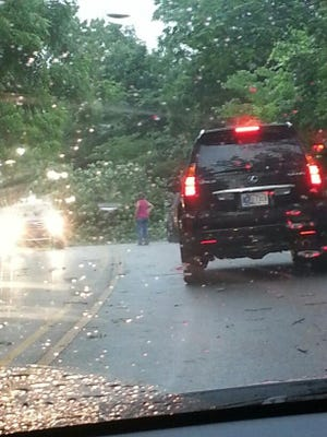 Meteorologist Evan Bentley, Syracuse, Ind., saw a downed tree about 5:40 p.m. June 23, 2014, on 86th Street, about a quarter-mile west of Lafayette Road in Indianapolis, following a storm that moved through the city.