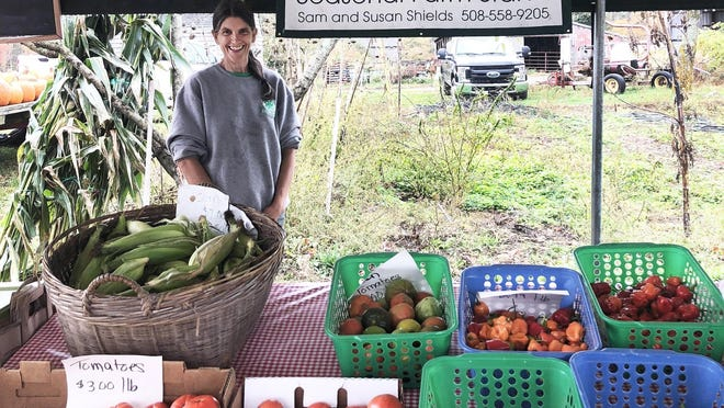 Susan Shields seen at the Lolans Farm farm stand in Middleboro.
