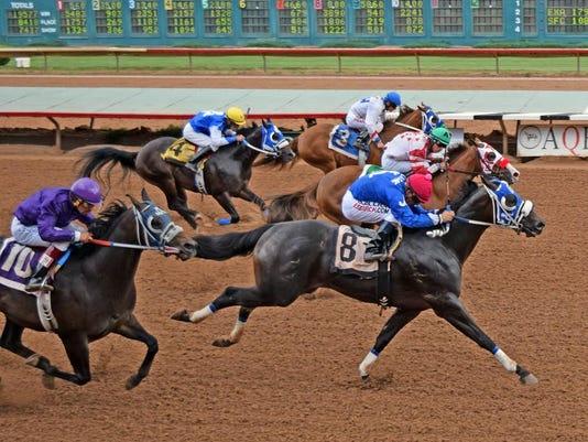 FMN Horses 0422