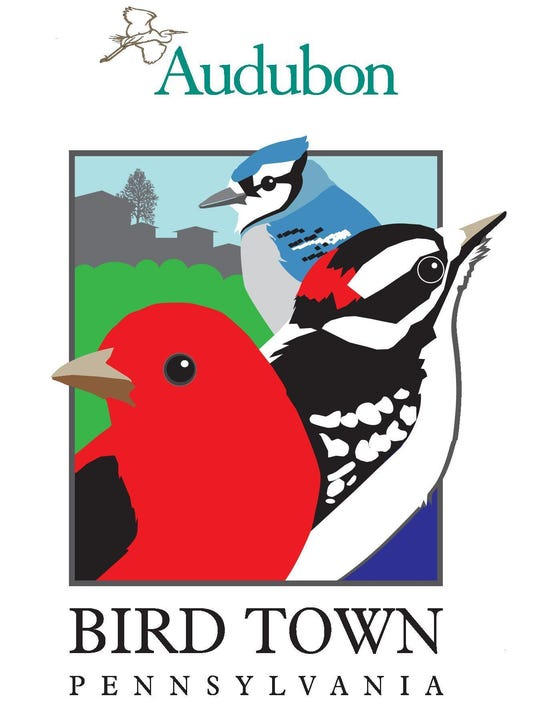 bird_town_logo