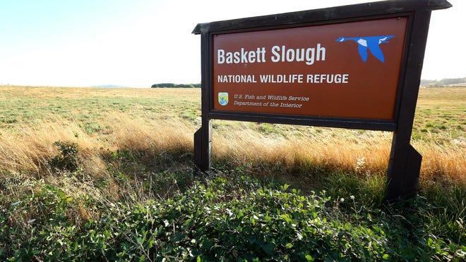 Help plant native milkweed plants at Baskett Slough National Wildlife Refuge on Dec. 10.