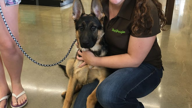 A PetPeople employee with a customer's German Shepherd puppy.