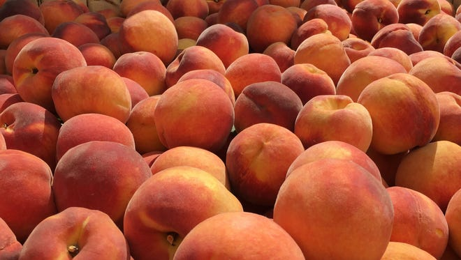 Only Jersey peaches  allowed at upcoming South Jersey festivals honoring the homegrown, fuzzy-skinned fruit