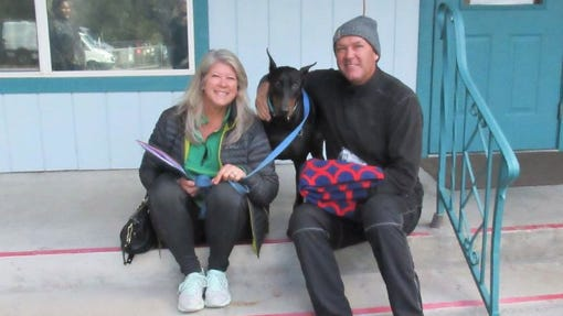 Ranger, a surrendered Doberman, was adopted in January by Jody and Shane Shelton of Lake Shastina. Ranger was one of a few dogs adopted before the COVID-19 shutdowns altered the process.