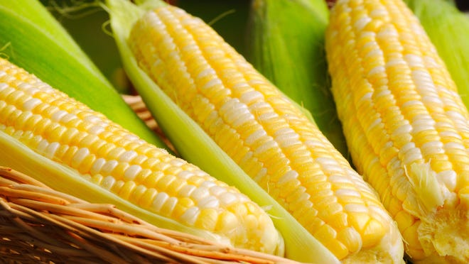 Corn is available in a variety of colors, including white, yellow and bicolor, but color has little to do with sweetness – the only thing that truly determines its taste is how long it's been off the stalk.