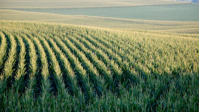 Farm income is expected to drop in 2016.