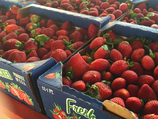 Boxes of fresh Plant City strawberries at Ritchey's Produce