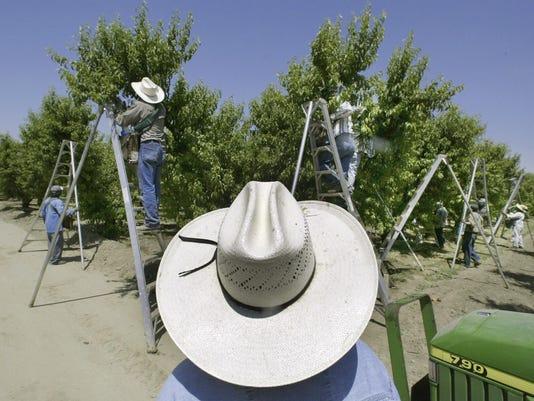 SNA0819 California Pesticide Rule Tightening pic