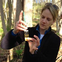 Mt. Cuba, UD researchers partner to study stream health