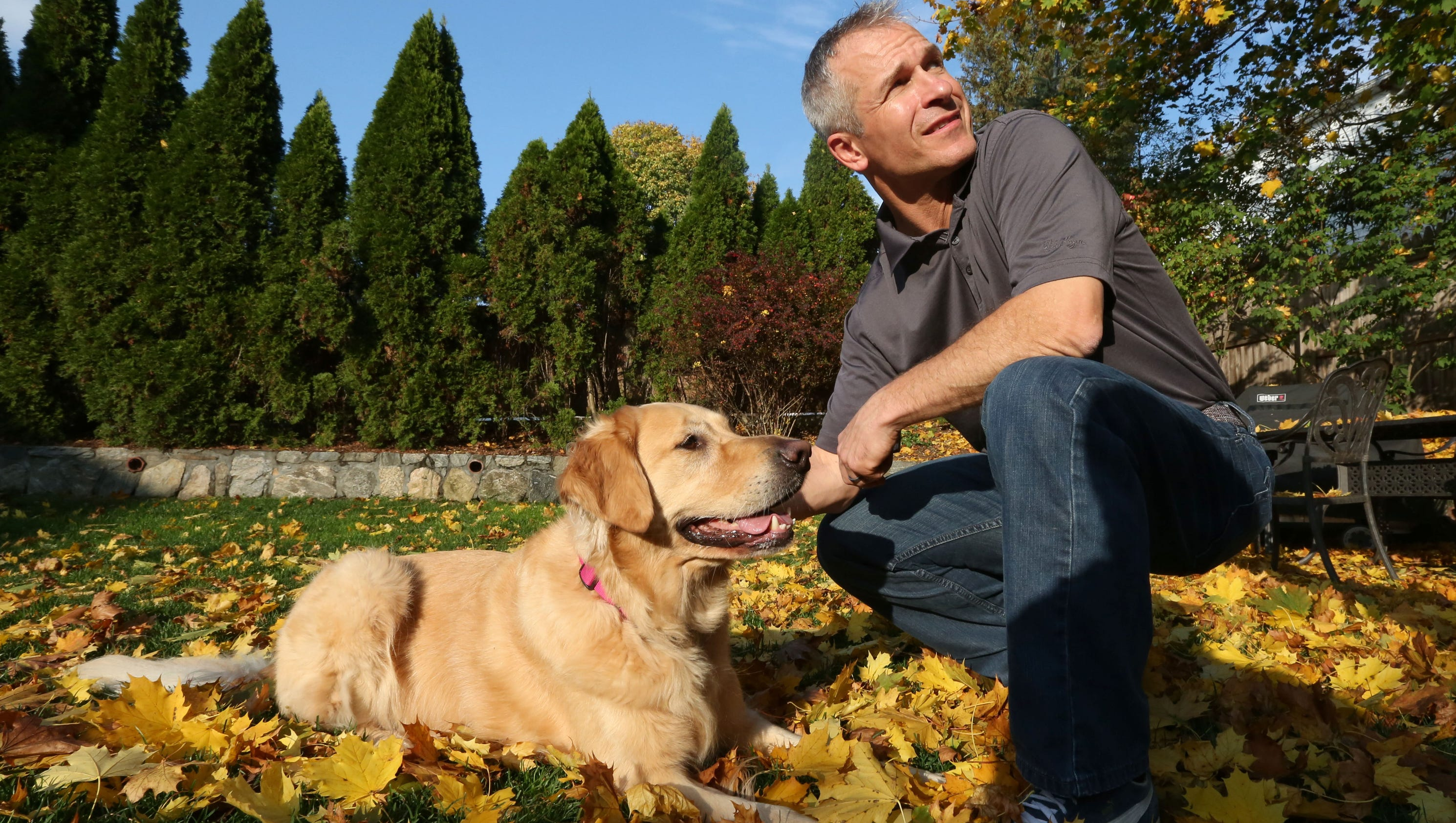 dog parks grow in popularity but spur controversy