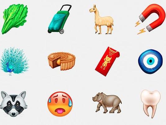 636537058931036437-emoji.JPG