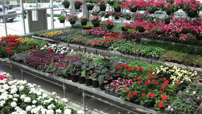 Master Gardener Plant Sale is Saturday at the Anderson County Farmers Market.