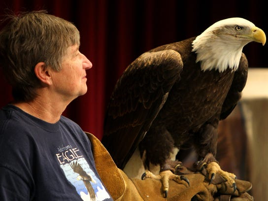 Learn about eagles during Eagle Days at Stockton Lake.
