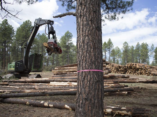 In July 2015, timber is processed in the Four Forest Restoration Initiative.