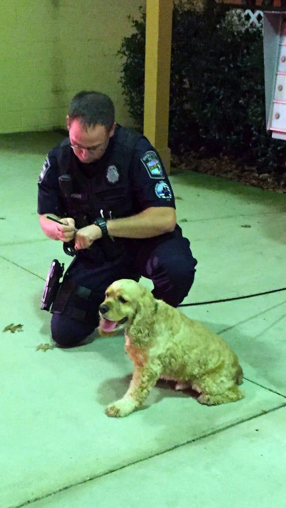 A Waynesboro police officer works a scene Tuesday night,