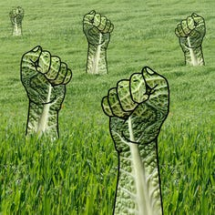 Your Turn: Environmentalists can sway midterm election