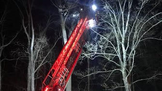 A paratrooper who got stuck in a tree during a training exercise had to be rescued by firefighters