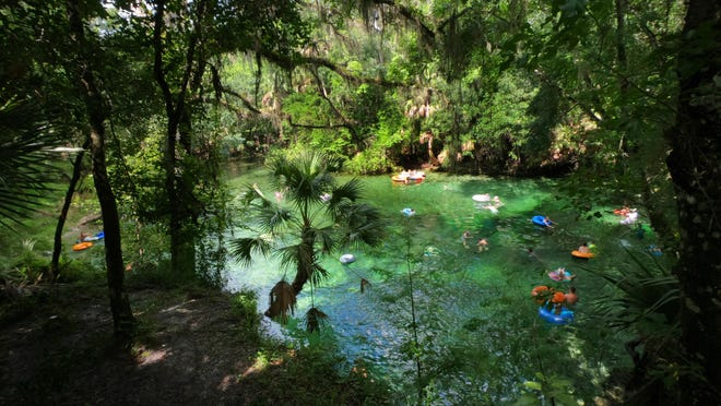 Blue Spring and other Florida waters are threatened by nutrient pollution.