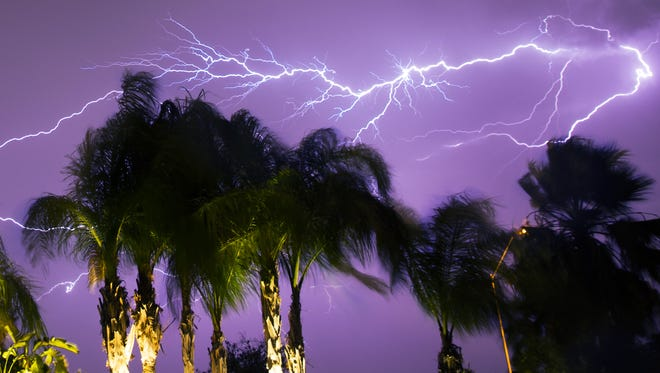 Palm trees wave in the wind while lightning strikes behind them during a monsoon storm in Mesa on July 29, 2016.