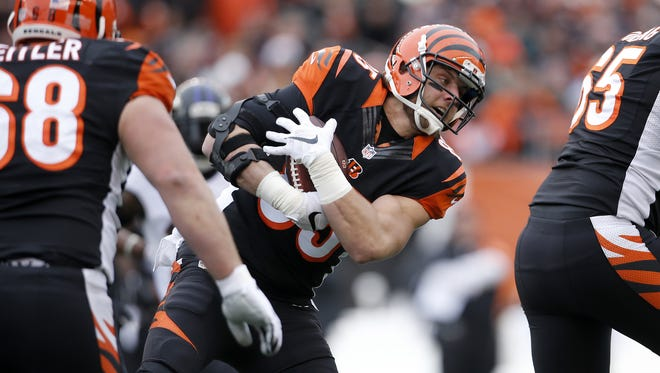 Cincinnati Bengals tight end Tyler Eifert (85) leans forward after making a catch in the first quarter during the Week 17 NFL game between the Baltimore Ravens and the Cincinnati Bengals, Sunday, Jan. 3, 2016, at Paul Brown Stadium in Cincinnati. The Ravens led 9-7 at halftime.