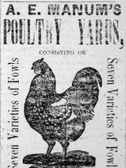 An ad from 1888 for A.E. Manum's Poultry Yards.