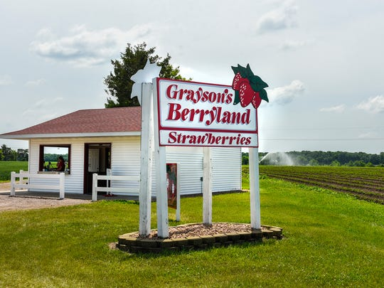 Grayson's Berryland is shown Thursday, June 21, in Clear Lake.