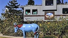 The caboose greeting center in Carrizozo is open if the flags are flying.