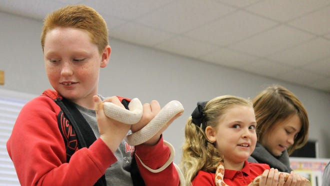 """Trenton Bartlett (from left), Hannah Stone and Roxie Botts interact with exhibits of """"Snakes Alive"""" during a hands-on presentation at the Mountain Home Christian Academy."""