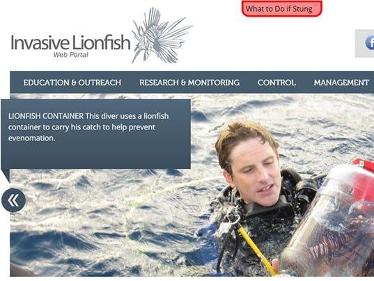 lionfishweb.jpg