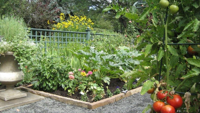 Earthworm castings give your garden a rich soil and strong root system allowing your plant material to flourish.
