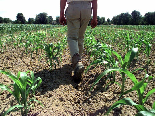 National Agriculture Day celebrates the contributions