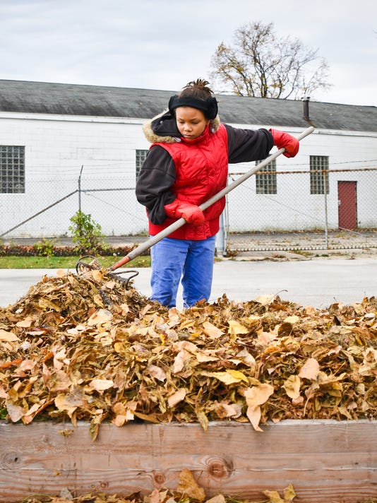 mulch-leaves.jpg