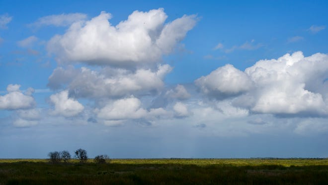 SAM WOLFE/TREASURE COAST NEWSPAPERS  Clouds pass over the site of the planned Fellsmere Water Management Area in 2013 which is being cleared and readied for flooding. The area, located alongside the Stick Marsh, will be used as an area for activities such as fishing.