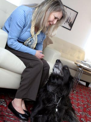 Jackson   is trained to alert Terri Lubaroff when her blood glucose levels are too high or too low.
