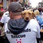 Pet Talk: Preparing your pet for disaster