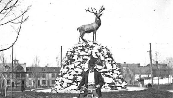 The Elks atop its rockery in Penn Park at the turn