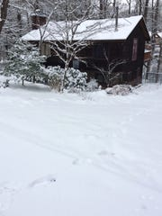 Snow in Haw Creek on Thursday morning