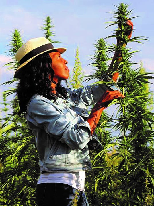 Marijuana Not Allowed At Coachella, But You Can Learn About It At Cannabis Festival