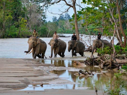 UN report sounds alarm on nature's decline | Byers