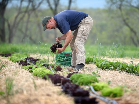 Brent Kaylor, a farmer who uses several environmentally-friendly