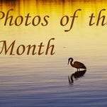 Best photos for the month of March for News-Press photographers