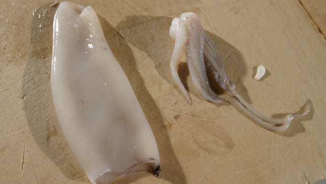Step-by-step how to cut squid into calamari.