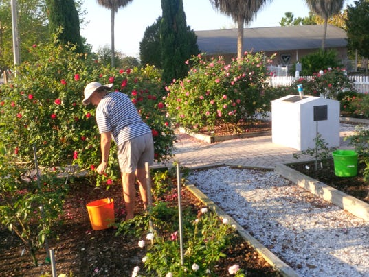 Garden Club Of Cape Coral Keeps Growing