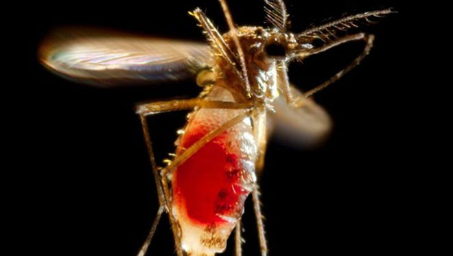 Gov. Rick Scott said Florida needs CDC action and supplies for Zika virus.