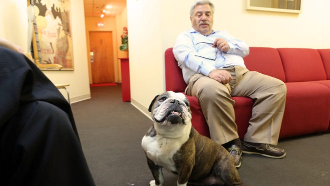 John Black, a patient who met with psychologist Harris Stratyner in Yonkers, says English bulldog Gertrude plays an important role in therapy sessions.